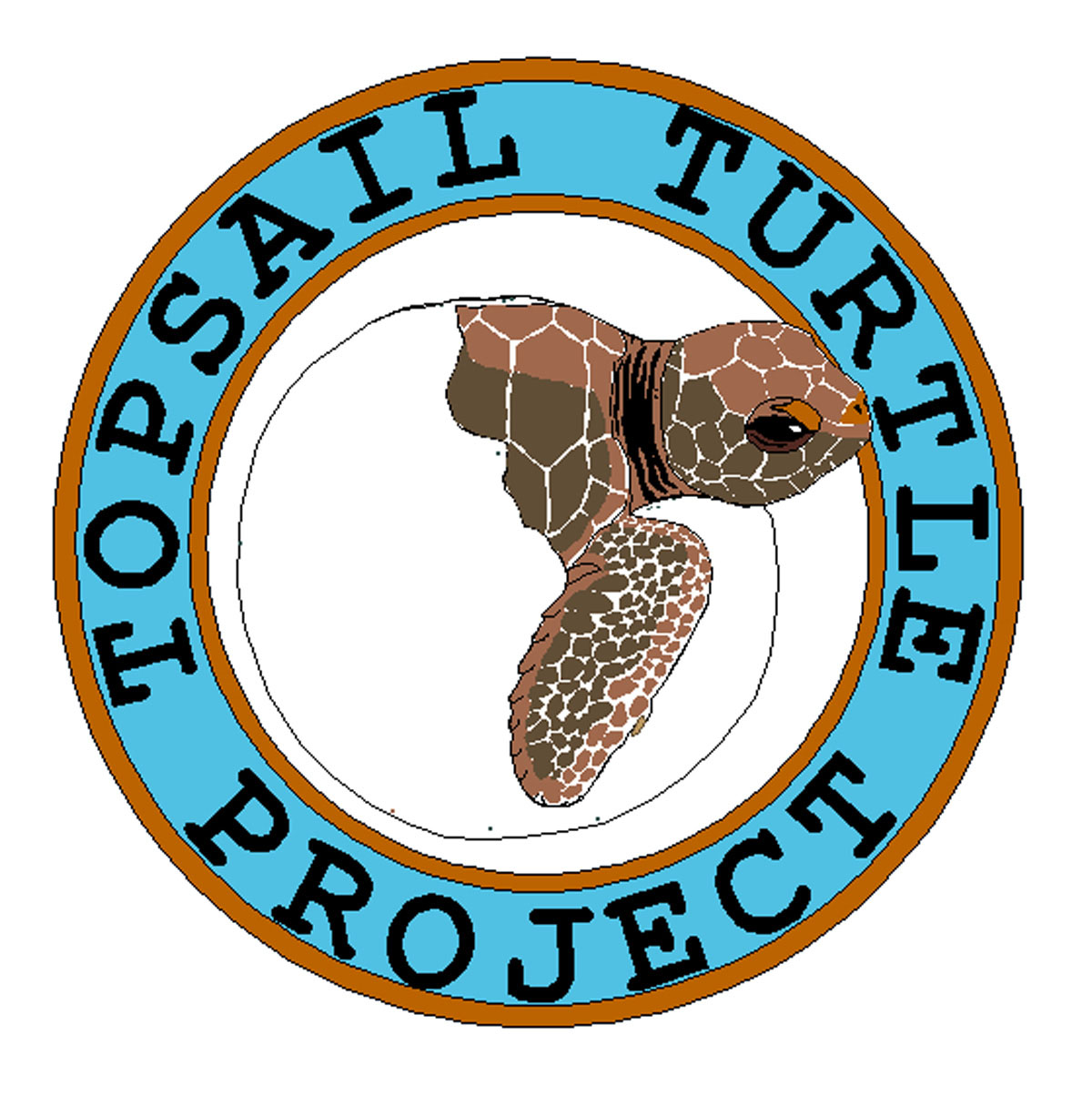 Topsail_Turtle_Project