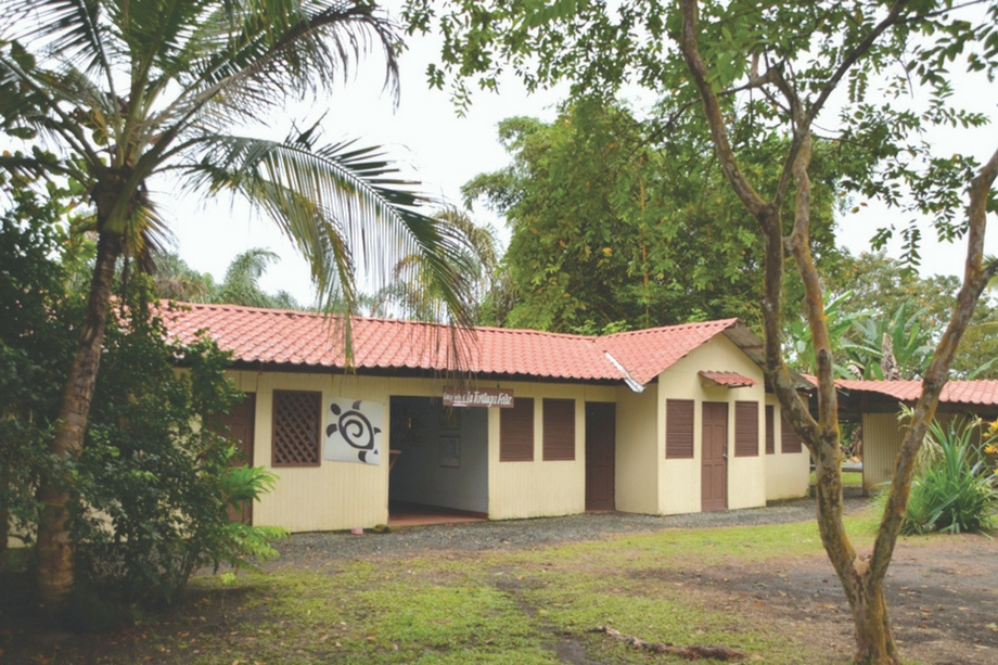 Costa-Rica-La-Tortuga-Feliz