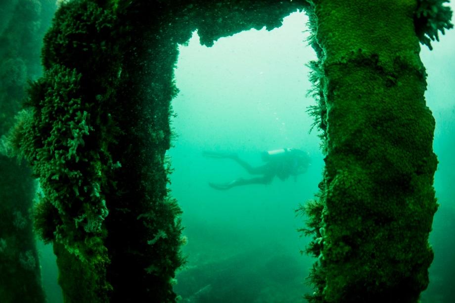 diving-wreck