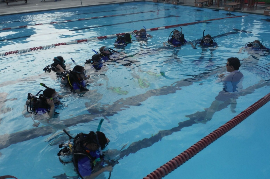 open-water-scuba-class-pool-lesson