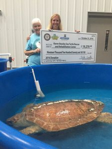 sea-turtle-camp-2016-donation